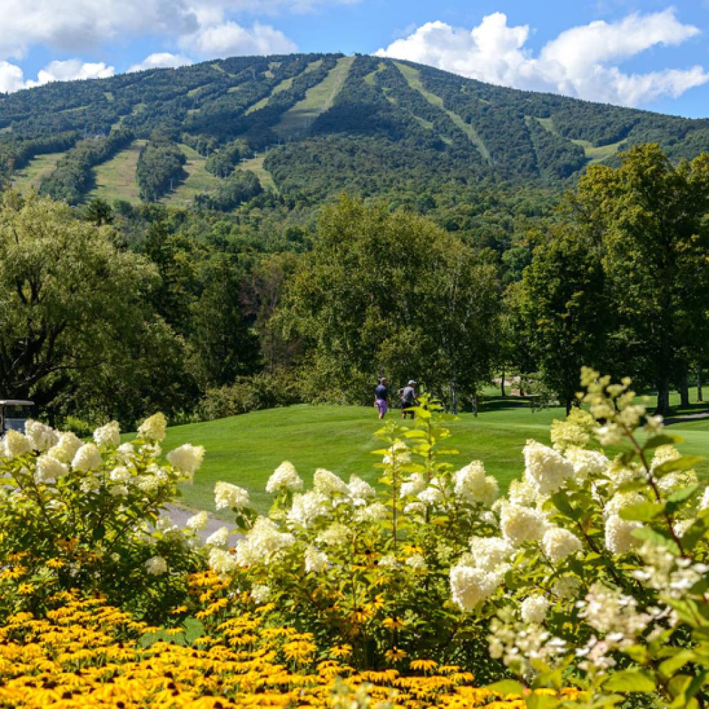 stratton mountain vermont summer